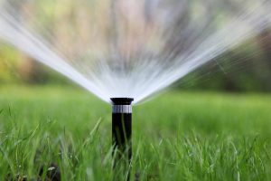 Irrigation and Water Management